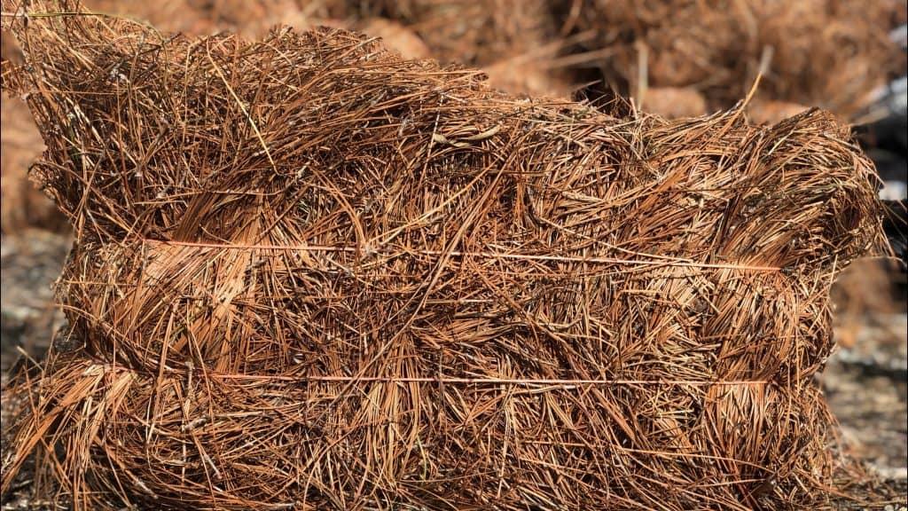 Pine Straw Bale